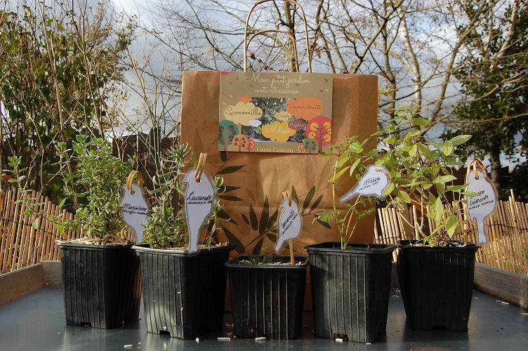 Pots plantes